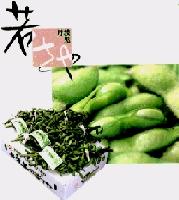 丹波黒豆の枝豆のおいしい茹で方と特価注文サイト丹波黒の
